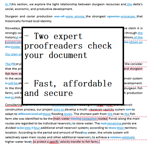 12 hour proofreading service